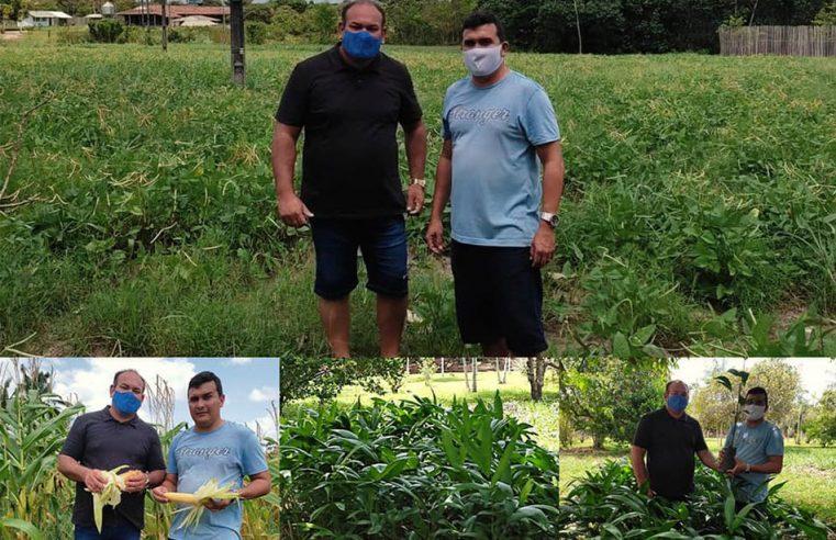 Prefeitura visita a Fazenda Esperança para conferir a produção de milho e feijão.